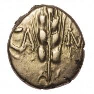 Catuvellauni 'Wild Type' Gold Quarter Stater